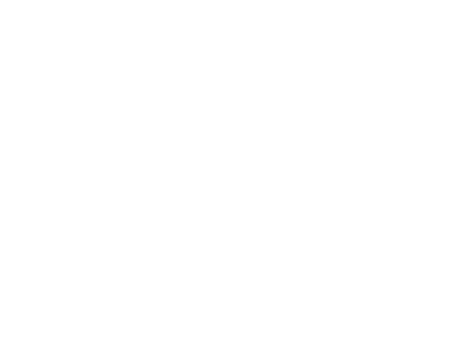 The Leaf Network